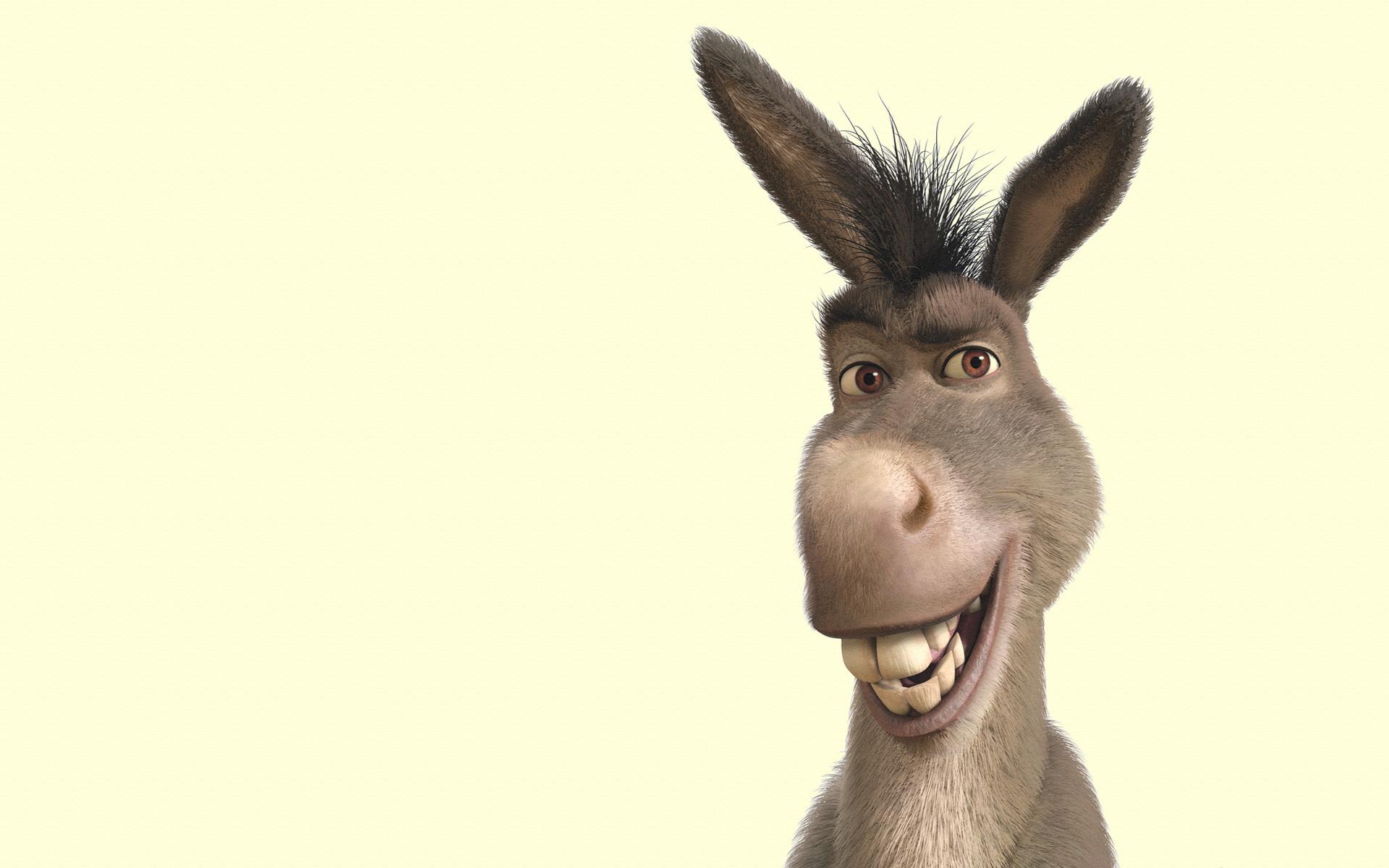 Name:  donkey-wallpaper-35.jpg Views: 66 Size:  590.4 KB